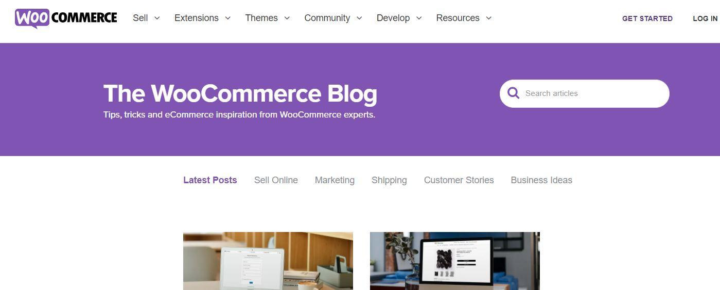 popular WordPress blog